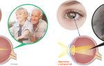Японские капли для глаз для глаз – все о зрении