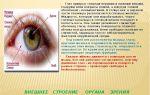 Веки глаз – все о зрении